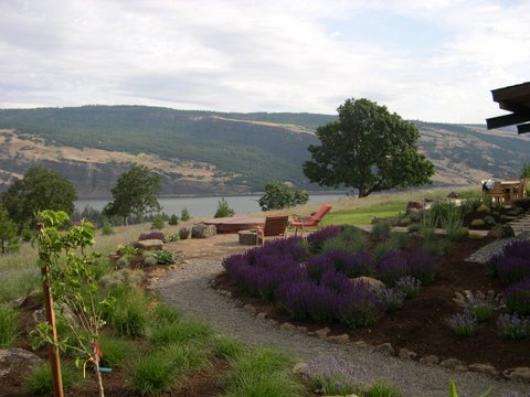 Back yard overlooking the Columbia River